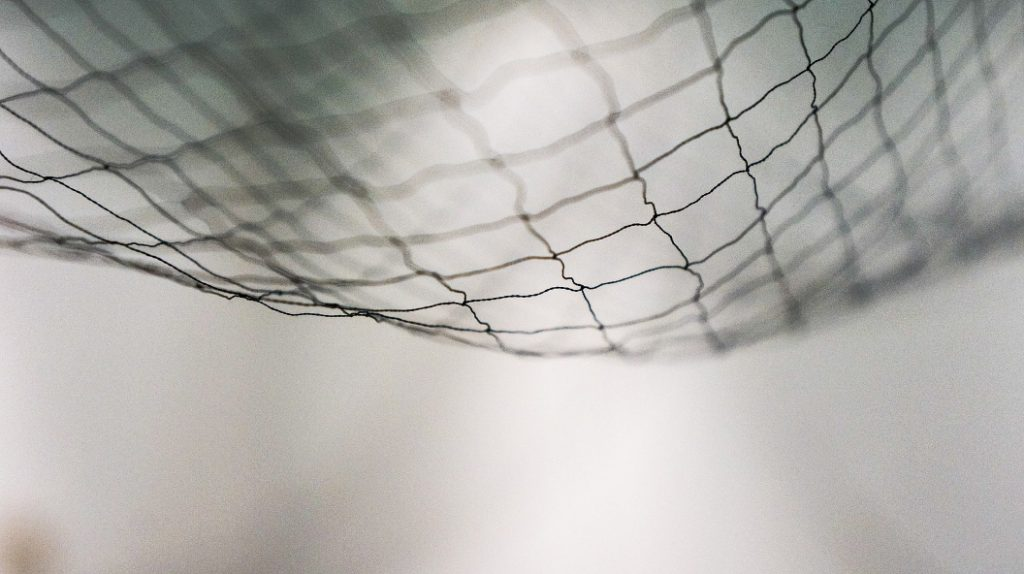 Netting Closeup